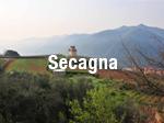 Secagna_thumb